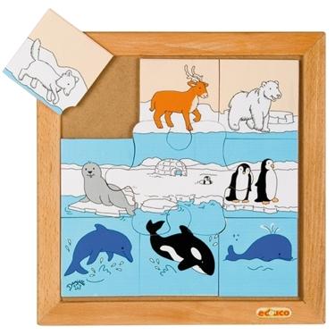 Εικόνα της Ζώα πόλων.