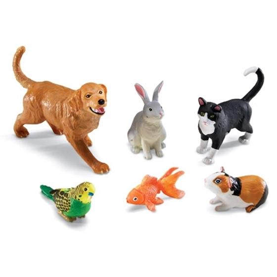 Εικόνα της Κατοικίδια ζώα.