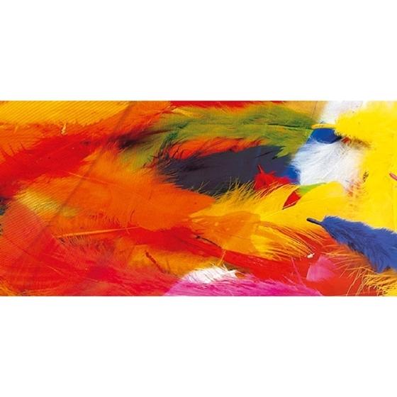 Εικόνα της Χρωματιστά φτερά.