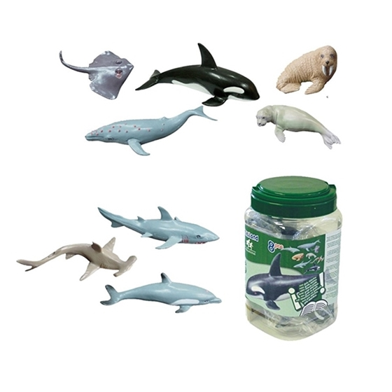 Εικόνα της Ζωάκια θάλασσας