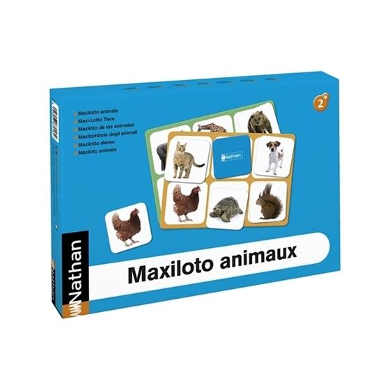 Εικόνα της Maxilotto Ζώα