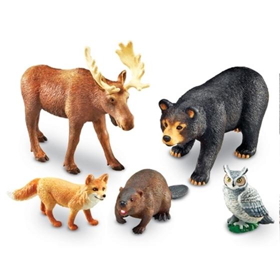 Εικόνα της Ζώα δάσους.