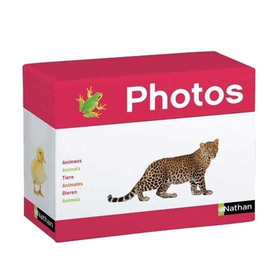 Εικόνα της Φωτογραφίες Ζώα