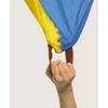 Εικόνα της Αερόστατο 5m