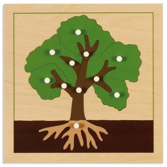 Εικόνα της Παζλ βοτανικής Δέντρο