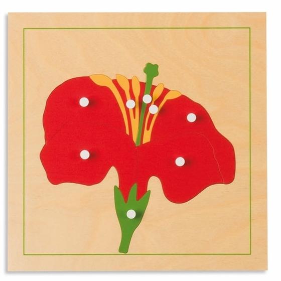 """Εικόνα της Παζλ βοτανικής """"Λουλούδι"""""""