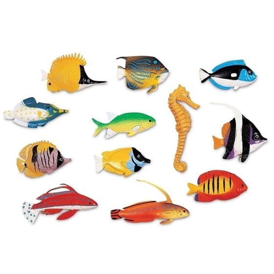 Εικόνα της Ψαράκια Μέτρησης